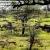 Faune-de-Tanzanie