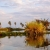 African scenery on Lake Manze ,Selous