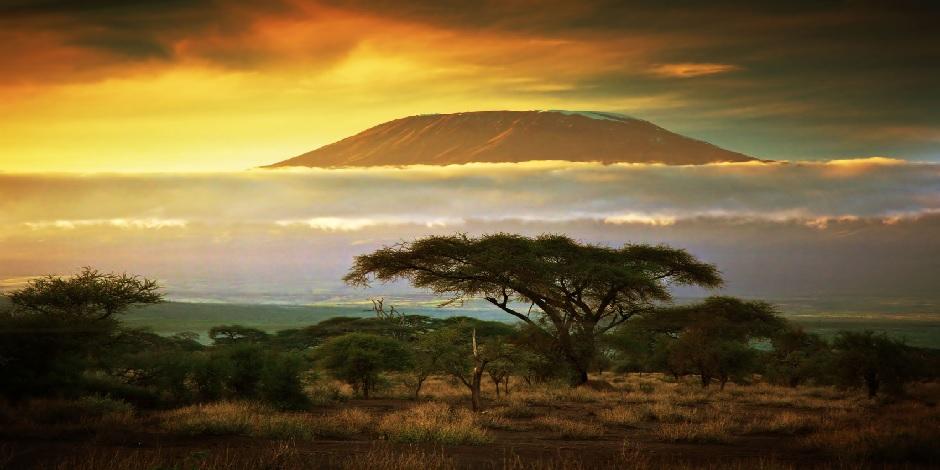 Le Kilimandjaro dans toute sa splendeur
