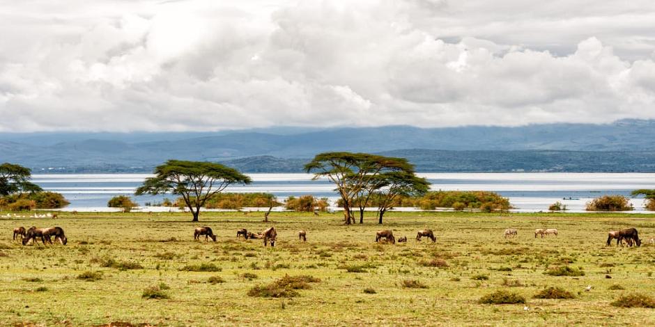 Paysage de rêve au Kenya